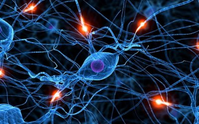 NCFE CACHE Level 2 Award in Introduction to Neuroscience in Early Years