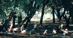 Forest School Education